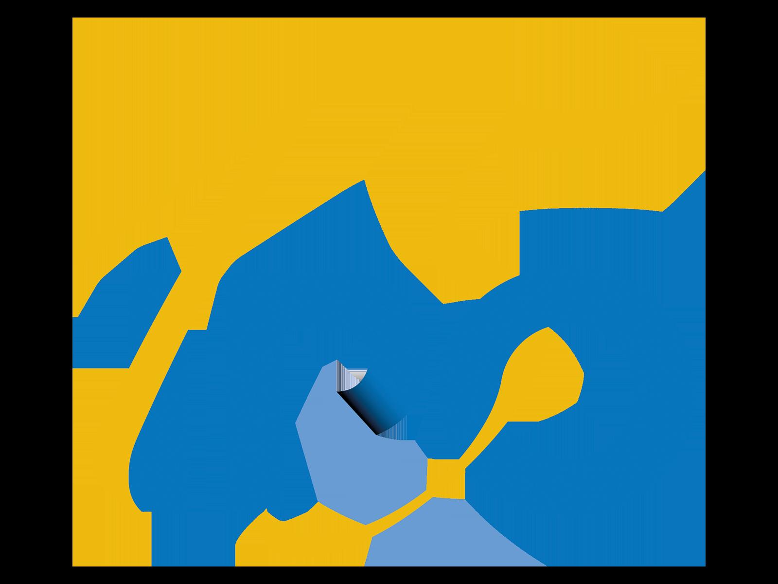 Centro IRO